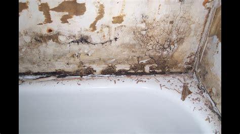 bathtub surround  wood framing water damage repair tips