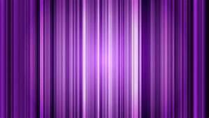Elegant Purple Background Loop Stock Footage Video 3359240 ...