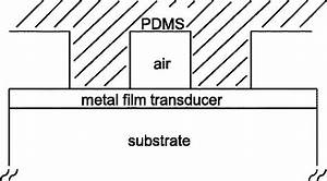 Schematic Diagram Of The Phase Mask And Sample  Not To Scale   The Pdms