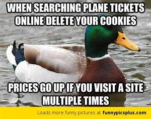 15 Best Actual Advice Mallard Memes | Funny Pictures