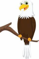 22 best Eagles images on Pinterest   Draw, Eagle cartoon ...