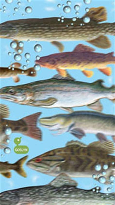 biological oxygen demand total suspended solids food