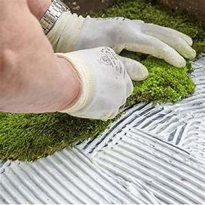 Mooswand Selber Bauen : moosbild wandbild mit moos pflanzenbilder wandbilder ~ Eleganceandgraceweddings.com Haus und Dekorationen