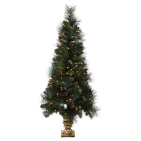 decorating with outdoor christmas trees