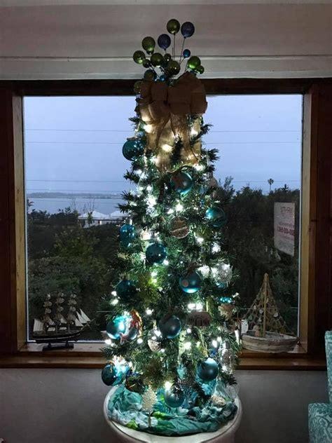 coastal christmas trees carons beach house