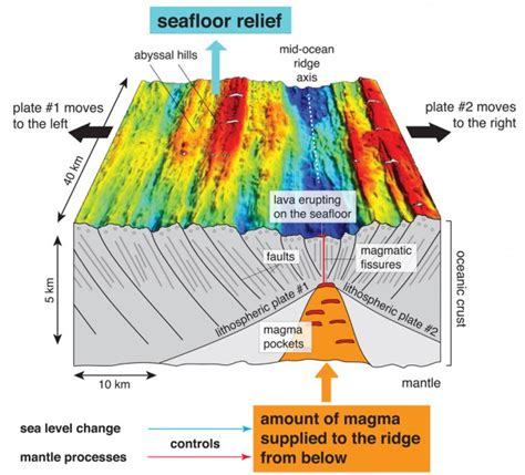where does seafloor spreading take place quizlet climate change leaves its on the sea floor maybe not