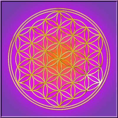 blume des lebens ausdrucken heilige geometrie blume des lebens flower of