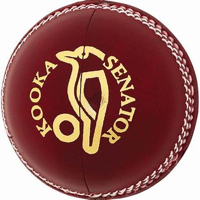 Cricket Ball Balls Kookaburra Senator Pngimg Nz