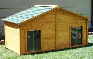 cool dog house plans for two dogs contemporary exterior With two level dog house