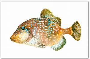 Items similar to Trigger fish 8x10 giclee print ...