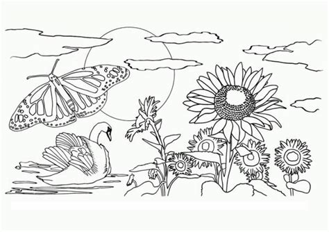 easy preschool printable  nature coloring pages