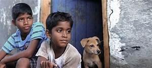 In award-winning Tamil movie 'Kaakkaa Muttai', two slum ...