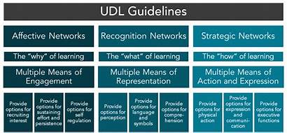Udl Guidelines Learning Universal Graphic Mohawk College
