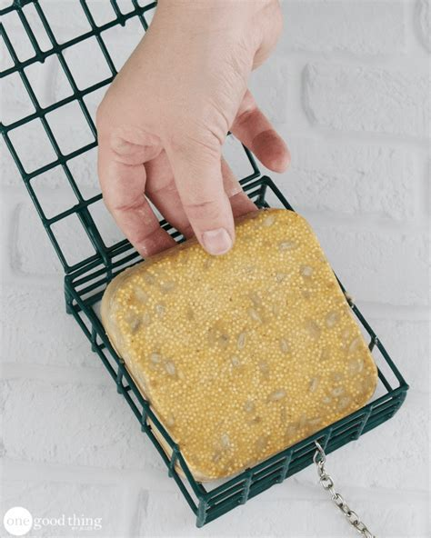 how to make homemade suet cakes to attract birds one