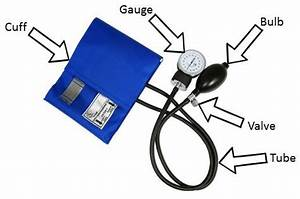 The Blood Pressure Cuff Parts
