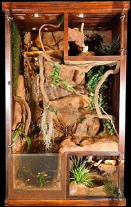 51 best images about Awesome Reptile Terrariums ...