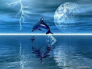 Free Animated Dolphin Screensavers Wallpaper - WallpaperSafari