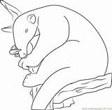 Anteater Coloringpages101 sketch template