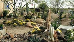 Awesome Desert Landscaping Ideas - YouTube