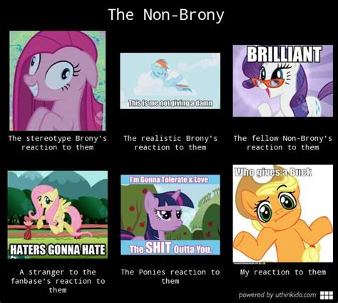 Brony Memes - brony memes 28 images brony memes 28 images my little pony brony memes mlp brony perception