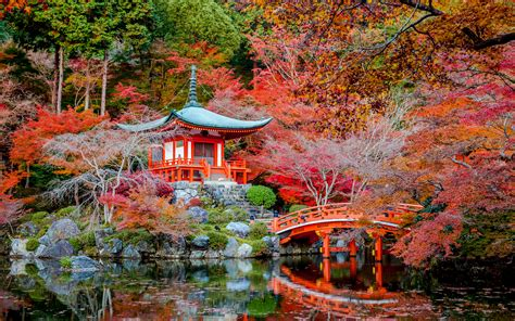 desktop wallpapers kyoto japan autumn nature bridges pond
