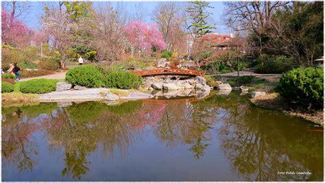 Japanischer Garten Wien Hohe Warte by Fr 252 Hling In Wien Im Setagayapark D 246 Bling