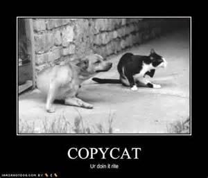 copy cat 301 moved permanently