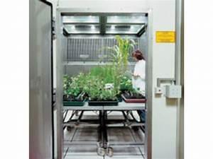 Plantes Pour Chambre : chambre de croissance de grande dimension pour les plantes 4 12 m 5 45 c vb series ~ Melissatoandfro.com Idées de Décoration