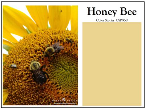 honey bee paint color how to bring your room to life with benjamin colors decorating by color expert