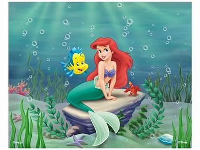 Mermaid Characters Cartoon Ariel Forgotten Daughter