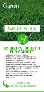 Moos Im Rasen Beseitigen : pin auf rasen ~ A.2002-acura-tl-radio.info Haus und Dekorationen