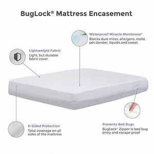 protect a bed buglock bed bug proof mattress cover 6 sided With bed bug encasement reviews