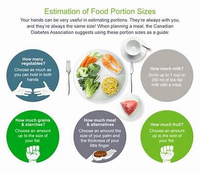 Onetouch Diabetic Diabetes Diet Portion Foods Sugar
