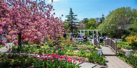 new york botanical garden wedding cost botanical garden weddings get prices for wedding