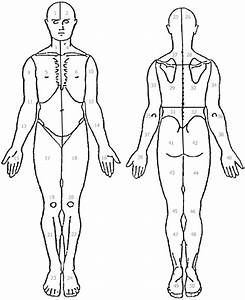 The Body Diagram Used By Fm Patients To Indicate Local