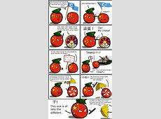 The protest that's different from the rest Polandball Comics