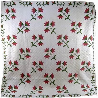Quilt Lily Carolina Pattern Antique Handmade 1860