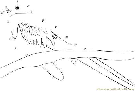 Golden Headed Quetzal Dot To Dot Printable Worksheet