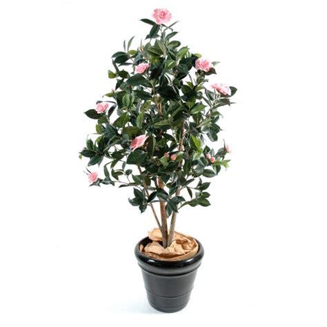 plante camelia en pot camelia pot terre composition artificielle fleurs plantes artificielles