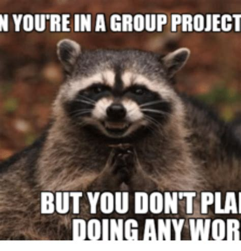 Group Project Memes - n you rein agroup project but you dont plai doing any wor wors meme on sizzle