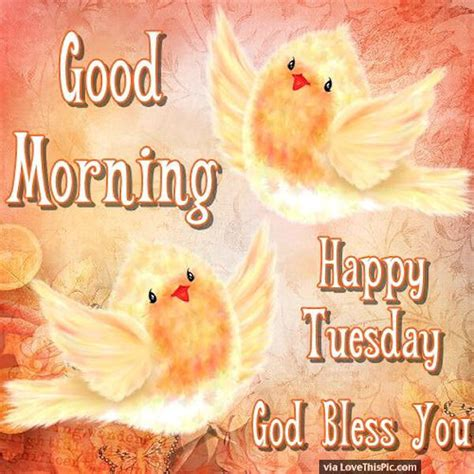 good morning happy tuesday god bless pictures