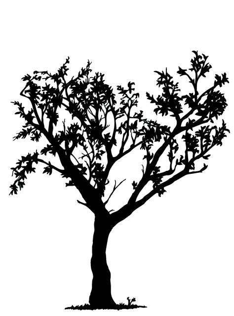 Simple Black And White Tree Design Clipart Panda Free