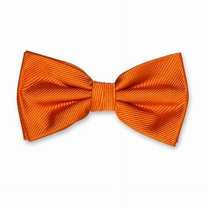 Bow Tie Orange Papillon Pajarita Seta Dasi