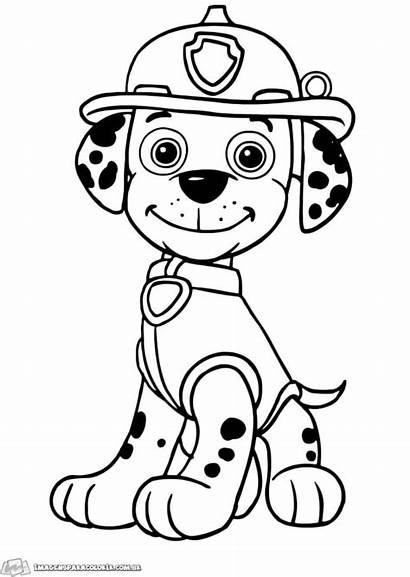 Patrol Paw Coloring Marshall Canina Patrulha Colorir
