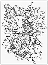 Coloring Adult Fish Koi Realistic Titan sketch template