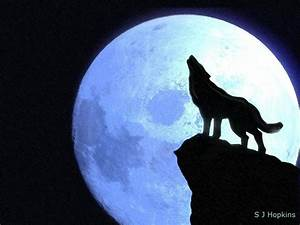 Wolf Howling At The Moon Wallpapers - Wallpaper Cave