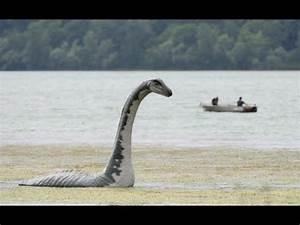 7 Extinct Animals That May Still Be Alive | Extinct ...