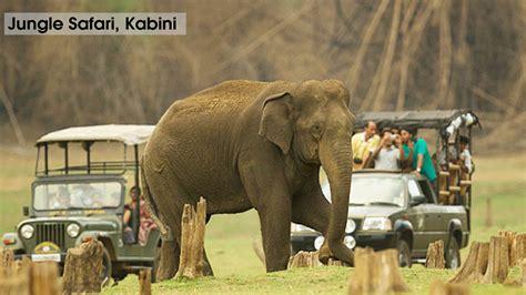 Jungle Safari, Kabini