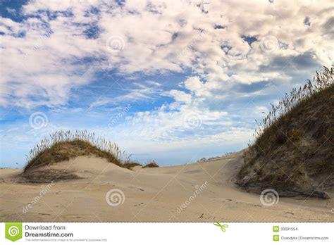 Landscape Beach Ecology System Stock Images Image