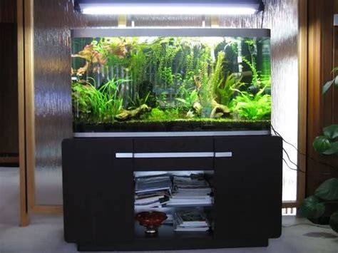 fluval osaka monsterfishkeepers